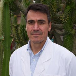 Claudio Andrés Fuentes Pinto
